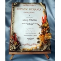 SKUMG-3 Dyplom uznania